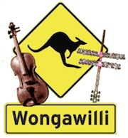 Wee Willi Fest – Wongawilli turns Silver